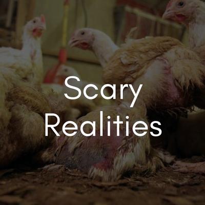 Scary Realities