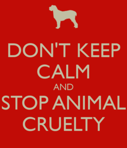 don-t-keep-calm-and-stop-animal-cruelty-3